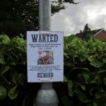 No 16 wanted Poster